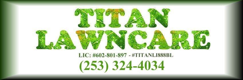 Lawncare Yardwork Tacoma Puyallup Parkland, lawncare yardwork mowing puyallup, lawncare yardwork mowing tacoma, lawncare yardwork mowing parkland, mowing tacoma, mowing puyallup, mowing parkland, Lawncare Yardwork lawn mowing triming thatching Tacoma Puyallup Parkland washington wa.