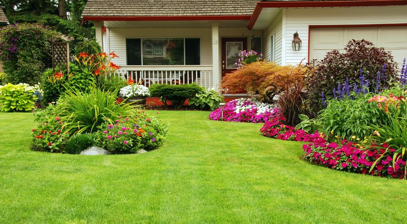 Lawncare Yardwork Edgewood Puyallup.